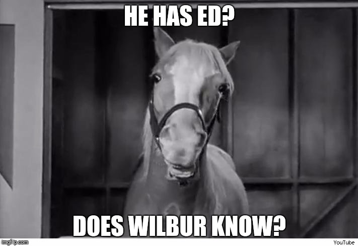 HE HAS ED? DOES WILBUR KNOW? | made w/ Imgflip meme maker