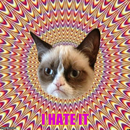 I HATE IT | image tagged in groovy grumpy cat 2 | made w/ Imgflip meme maker