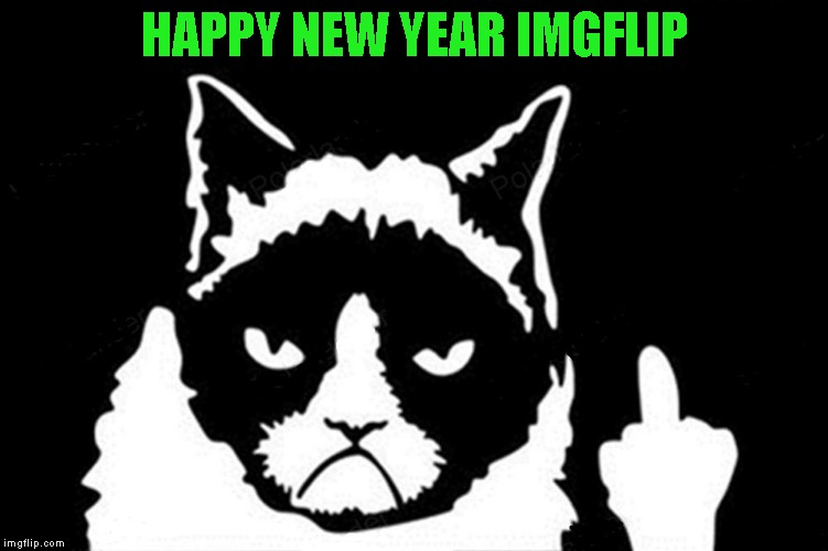 Wishing all of Imgflip a Happy New Year!!! Hope it's a wonderful year for everyone! | HAPPY NEW YEAR IMGFLIP | image tagged in grumpy cat flipping the bird,memes,happy new year,grumpy cat,cats | made w/ Imgflip meme maker