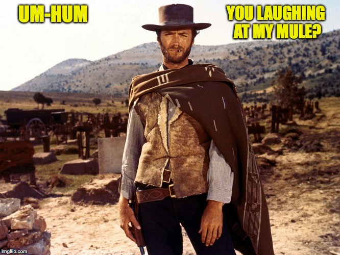 UM-HUM YOU LAUGHING AT MY MULE? | made w/ Imgflip meme maker