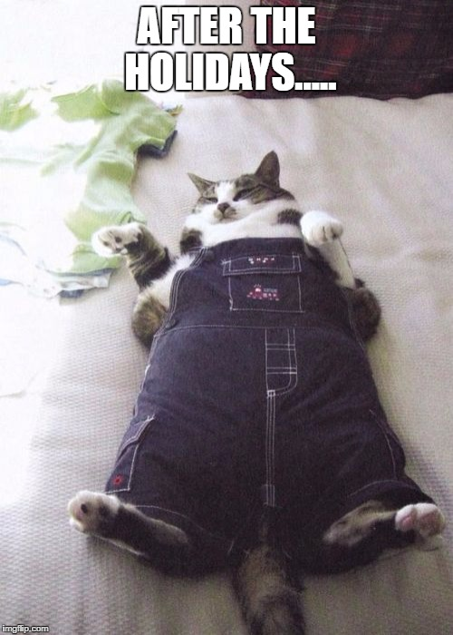 Fat Cat | AFTER THE HOLIDAYS..... | image tagged in memes,fat cat | made w/ Imgflip meme maker