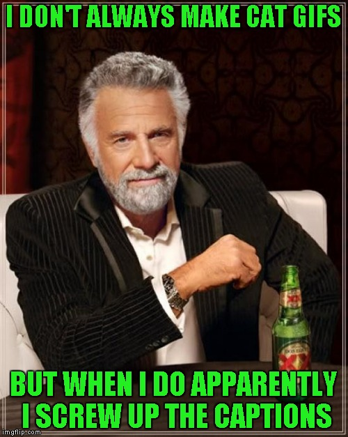 The Most Interesting Man In The World Meme | I DON'T ALWAYS MAKE CAT GIFS BUT WHEN I DO APPARENTLY I SCREW UP THE CAPTIONS | image tagged in memes,the most interesting man in the world | made w/ Imgflip meme maker