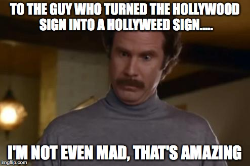 actually im not even mad | TO THE GUY WHO TURNED THE HOLLYWOOD SIGN INTO A HOLLYWEED SIGN..... I'M NOT EVEN MAD, THAT'S AMAZING | image tagged in actually im not even mad | made w/ Imgflip meme maker