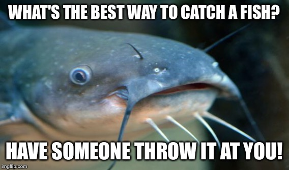 WHAT'S THE BEST WAY TO CATCH A FISH? HAVE SOMEONE THROW IT AT YOU! | made w/ Imgflip meme maker