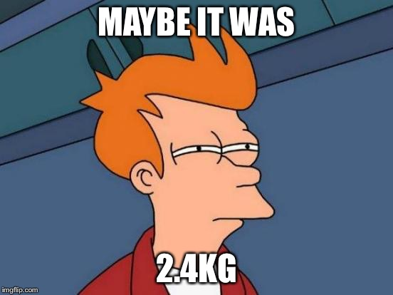 Futurama Fry Meme | MAYBE IT WAS 2.4KG | image tagged in memes,futurama fry | made w/ Imgflip meme maker