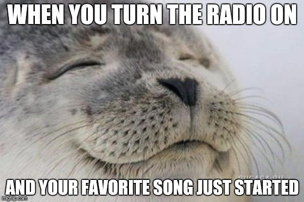 It Doesn't happen nearly often enough | WHEN YOU TURN THE RADIO ON AND YOUR FAVORITE SONG JUST STARTED | image tagged in happy seal,radio | made w/ Imgflip meme maker