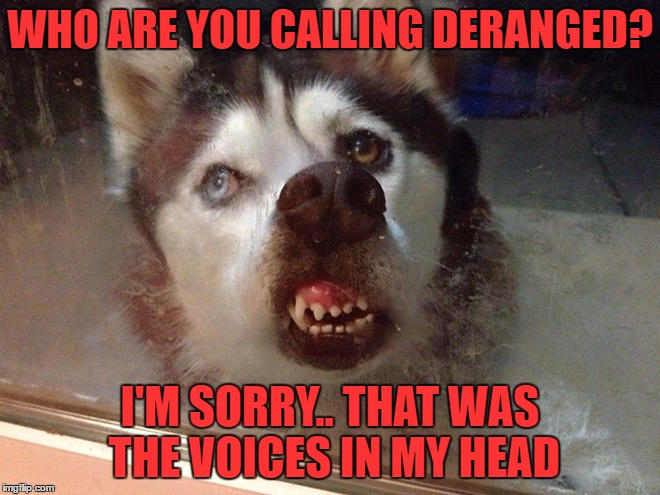 WHO ARE YOU CALLING DERANGED? I'M SORRY.. THAT WAS THE VOICES IN MY HEAD | made w/ Imgflip meme maker