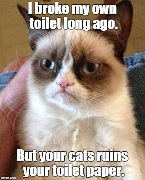Grumpy Cat Meme | I broke my own toilet long ago. But your cats ruins your toilet paper. | image tagged in memes,grumpy cat | made w/ Imgflip meme maker