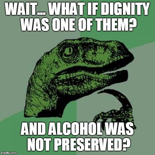 Philosoraptor Meme | WAIT... WHAT IF DIGNITY WAS ONE OF THEM? AND ALCOHOL WAS NOT PRESERVED? | image tagged in memes,philosoraptor | made w/ Imgflip meme maker