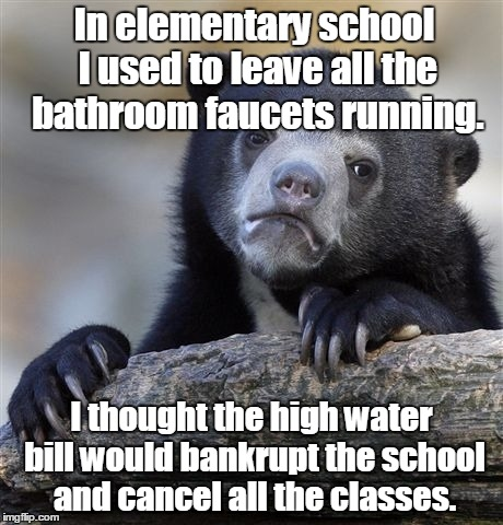 Confession Bear Meme | In elementary school I used to leave all the bathroom faucets running. I thought the high water bill would bankrupt the school and cancel al | image tagged in memes,confession bear | made w/ Imgflip meme maker