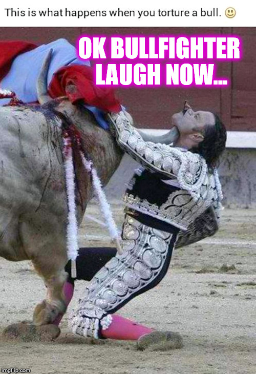 Bullfighter Down | OK BULLFIGHTER LAUGH NOW... | image tagged in bull murderer,bull,fight,revenge,ole | made w/ Imgflip meme maker