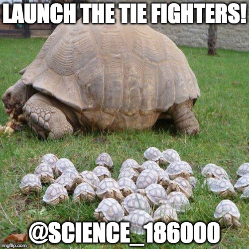 Launch the TIE fighters! | LAUNCH THE TIE FIGHTERS! @SCIENCE_186000 | image tagged in star wars,death star,tie fighter,science,rogue one | made w/ Imgflip meme maker