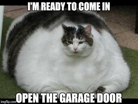 I'M READY TO COME IN OPEN THE GARAGE DOOR | made w/ Imgflip meme maker
