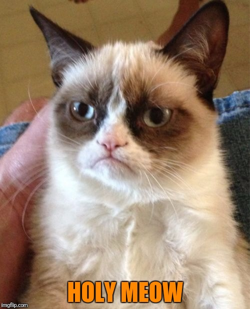 Grumpy Cat Meme | HOLY MEOW | image tagged in memes,grumpy cat | made w/ Imgflip meme maker