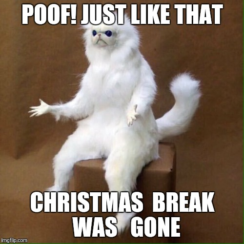 POOF! JUST LIKE THAT CHRISTMAS  BREAK  WAS   GONE | image tagged in poofcat | made w/ Imgflip meme maker