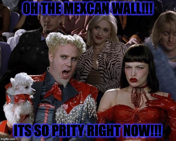 Mugatu So Hot Right Now Meme | OH THE MEXCAN WALL!!! ITS SO PRITY RIGHT NOW!!! | image tagged in memes,mugatu so hot right now | made w/ Imgflip meme maker
