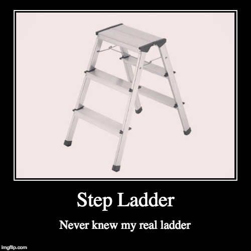 Credit to the 'Bad Luck Brian' Meme a while back | Step Ladder | Never knew my real ladder | image tagged in funny,demotivationals,step ladder,bacon | made w/ Imgflip demotivational maker