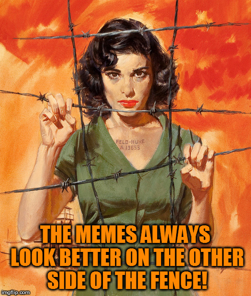 THE MEMES ALWAYS LOOK BETTER ON THE OTHER SIDE OF THE FENCE! | made w/ Imgflip meme maker