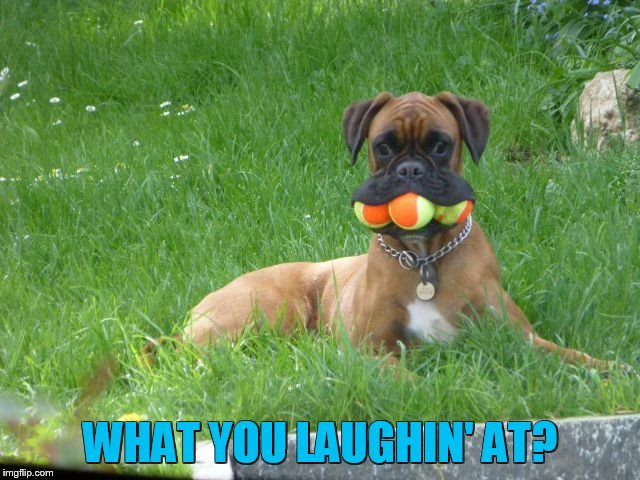 WHAT YOU LAUGHIN' AT? | made w/ Imgflip meme maker