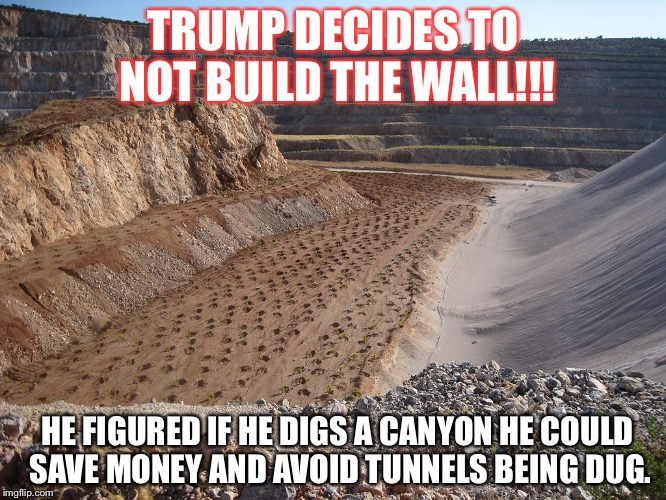 TRUMP DECIDES TO NOT BUILD THE WALL!!! HE FIGURED IF HE DIGS A CANYON HE COULD SAVE MONEY AND AVOID TUNNELS BEING DUG. | image tagged in grand canyon | made w/ Imgflip meme maker