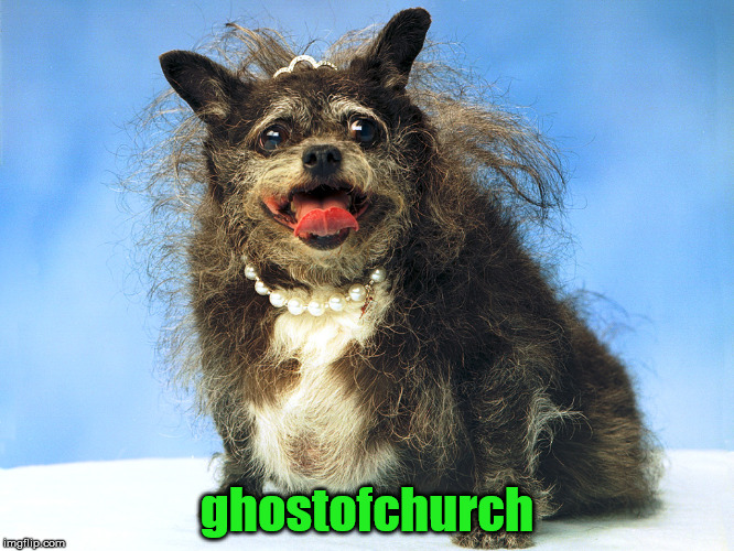 Ugly Dog | ghostofchurch | image tagged in ugly dog | made w/ Imgflip meme maker