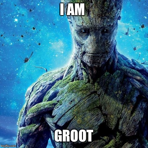 Groot |  I AM; GROOT | image tagged in groot | made w/ Imgflip meme maker