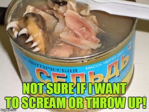 NOT SURE IF I WANT TO SCREAM OR THROW UP! | image tagged in gross foreign foods | made w/ Imgflip meme maker