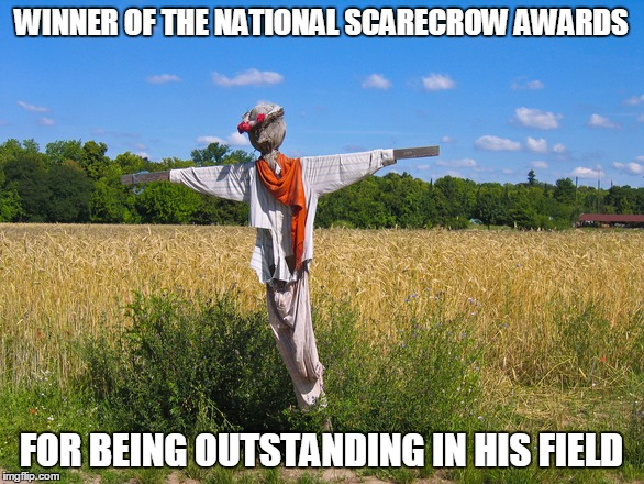 It's Award Season Everywhere | WINNER OF THE NATIONAL SCARECROW AWARDS FOR BEING OUTSTANDING IN HIS FIELD | image tagged in scarecrow,awards | made w/ Imgflip meme maker