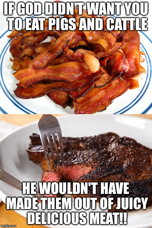 IF GOD DIDN'T WANT YOU TO EAT PIGS AND CATTLE HE WOULDN'T HAVE MADE THEM OUT OF JUICY DELICIOUS MEAT!! | image tagged in meat,food,happy meal,pleasure | made w/ Imgflip meme maker
