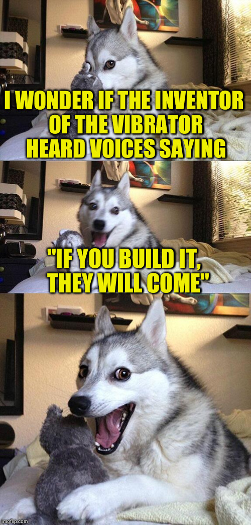 "Bad Pun Dog Meme | I WONDER IF THE INVENTOR OF THE VIBRATOR HEARD VOICES SAYING ""IF YOU BUILD IT,  THEY WILL COME"" 