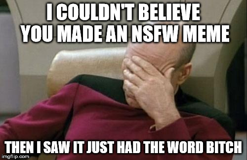 Captain Picard Facepalm Meme | I COULDN'T BELIEVE YOU MADE AN NSFW MEME THEN I SAW IT JUST HAD THE WORD B**CH | image tagged in memes,captain picard facepalm | made w/ Imgflip meme maker