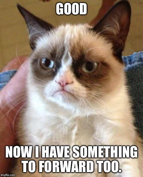 Grumpy Cat Meme | GOOD NOW I HAVE SOMETHING TO FORWARD TOO. | image tagged in memes,grumpy cat | made w/ Imgflip meme maker