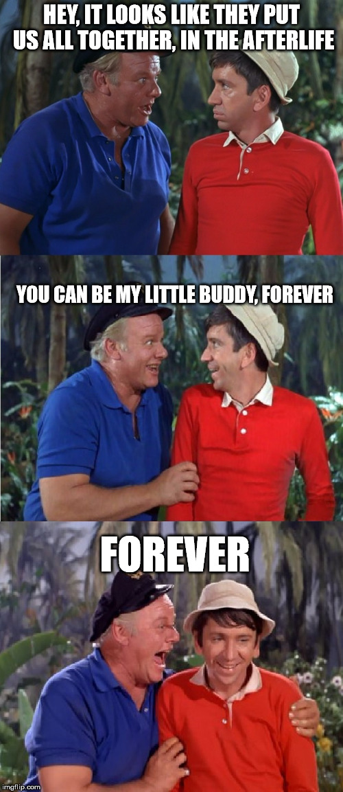 Gilligan Bad Pun | HEY, IT LOOKS LIKE THEY PUT US ALL TOGETHER, IN THE AFTERLIFE FOREVER YOU CAN BE MY LITTLE BUDDY, FOREVER | image tagged in gilligan bad pun,gilligan,bob denver,celebrity deaths | made w/ Imgflip meme maker