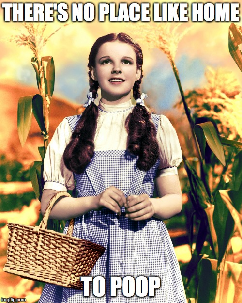 THERE'S NO PLACE LIKE HOME TO POOP | image tagged in wizard of oz,funny | made w/ Imgflip meme maker