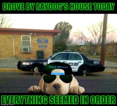 Bad puppy lol! | DROVE BY RAYDOG'S HOUSE TODAY EVERYTHING SEEMED IN ORDER | image tagged in raydog,good boy,just because | made w/ Imgflip meme maker