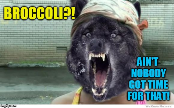 Ain't Nobody Got Time For That Wolf | BROCCOLI?! AIN'T NOBODY GOT TIME FOR THAT! | image tagged in ain't nobody got time for that wolf | made w/ Imgflip meme maker