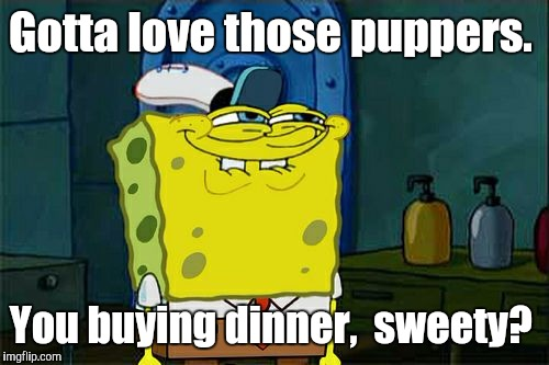 Dont You Squidward Meme | Gotta love those puppers. You buying dinner,  sweety? | image tagged in memes,dont you squidward | made w/ Imgflip meme maker
