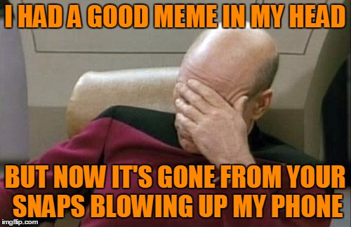 Captain Picard Facepalm Meme | I HAD A GOOD MEME IN MY HEAD BUT NOW IT'S GONE FROM YOUR SNAPS BLOWING UP MY PHONE | image tagged in memes,captain picard facepalm | made w/ Imgflip meme maker