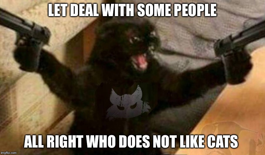 Cat With Guns Imgflip