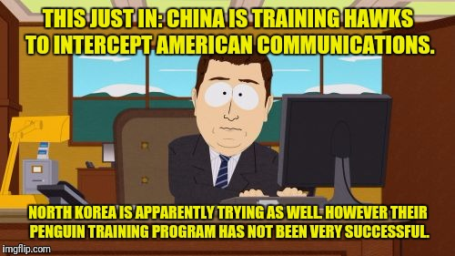Aaaaand Its Gone Meme | THIS JUST IN: CHINA IS TRAINING HAWKS TO INTERCEPT AMERICAN COMMUNICATIONS. NORTH KOREA IS APPARENTLY TRYING AS WELL. HOWEVER THEIR PENGUIN  | image tagged in memes,aaaaand its gone | made w/ Imgflip meme maker