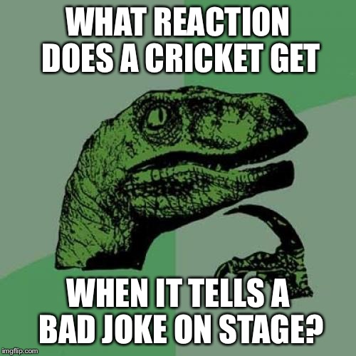 Philosoraptor Meme | WHAT REACTION DOES A CRICKET GET WHEN IT TELLS A BAD JOKE ON STAGE? | image tagged in memes,philosoraptor | made w/ Imgflip meme maker