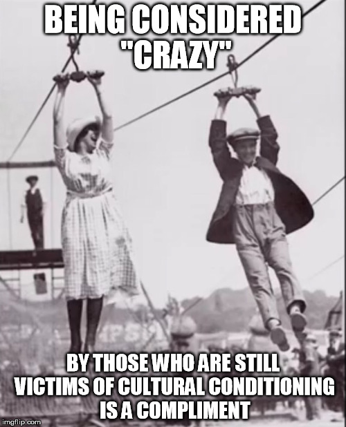 "crazy couple pwns | BEING CONSIDERED ""CRAZY"" BY THOSE WHO ARE STILL VICTIMS OF CULTURAL CONDITIONING IS A COMPLIMENT 