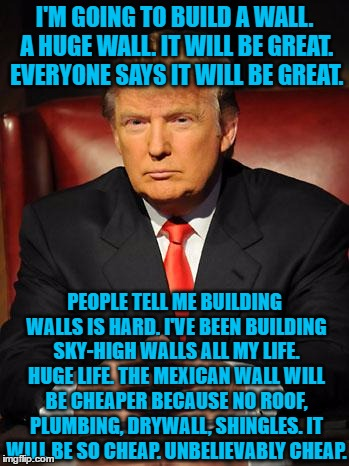 Serious Trump | I'M GOING TO BUILD A WALL. A HUGE WALL. IT WILL BE GREAT. EVERYONE SAYS IT WILL BE GREAT. PEOPLE TELL ME BUILDING WALLS IS HARD. I'VE BEEN B | image tagged in serious trump | made w/ Imgflip meme maker