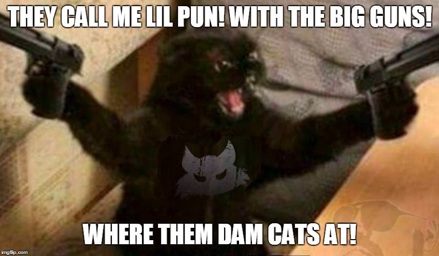 Cat With Guns | THEY CALL ME LIL PUN! WITH THE BIG GUNS! WHERE THEM DAM CATS AT! | image tagged in cat with guns | made w/ Imgflip meme maker