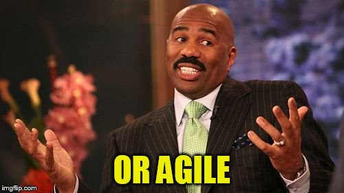 Steve Harvey Meme | OR AGILE | image tagged in memes,steve harvey | made w/ Imgflip meme maker