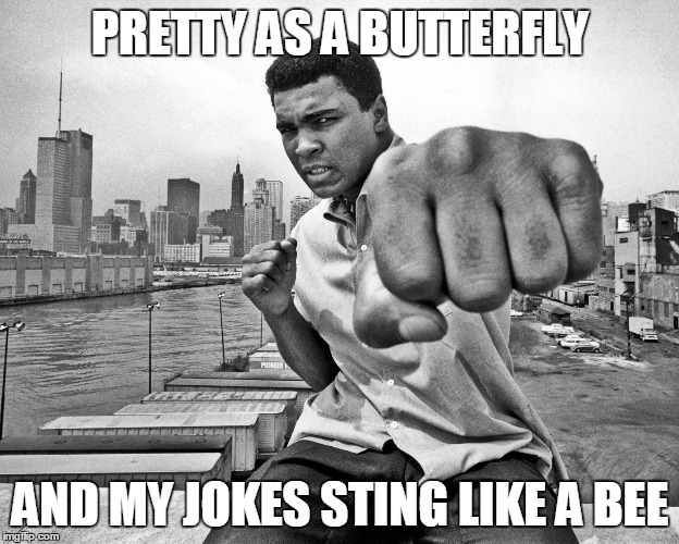 PRETTY AS A BUTTERFLY AND MY JOKES STING LIKE A BEE | made w/ Imgflip meme maker