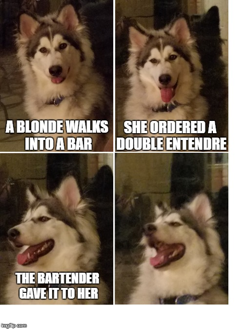 A BLONDE WALKS INTO A BAR SHE ORDERED A DOUBLE ENTENDRE THE BARTENDER GAVE IT TO HER | image tagged in bad pun dog,dumb blonde | made w/ Imgflip meme maker