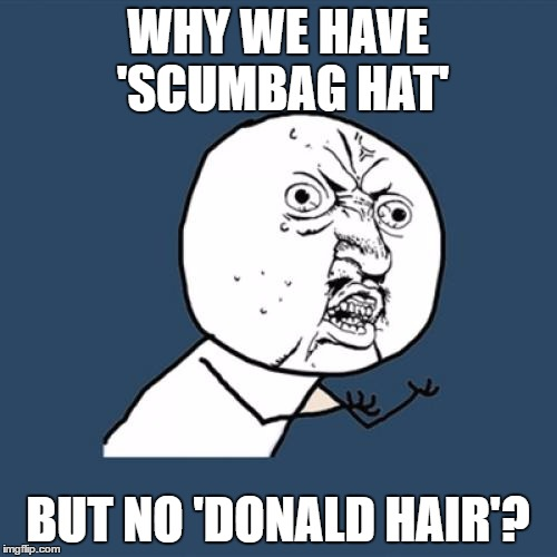 Y U No Meme | WHY WE HAVE 'SCUMBAG HAT' BUT NO 'DONALD HAIR'? | image tagged in memes,y u no | made w/ Imgflip meme maker