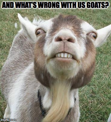 AND WHAT'S WRONG WITH US GOATS? | made w/ Imgflip meme maker