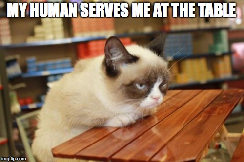 MY HUMAN SERVES ME AT THE TABLE | made w/ Imgflip meme maker